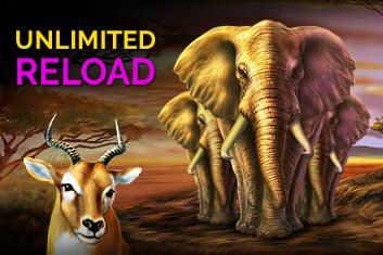 Reload Bonus 1